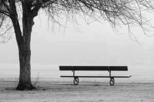 bench_in_a_misty_park