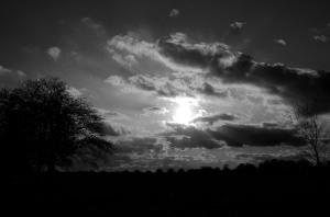 sunset_202841